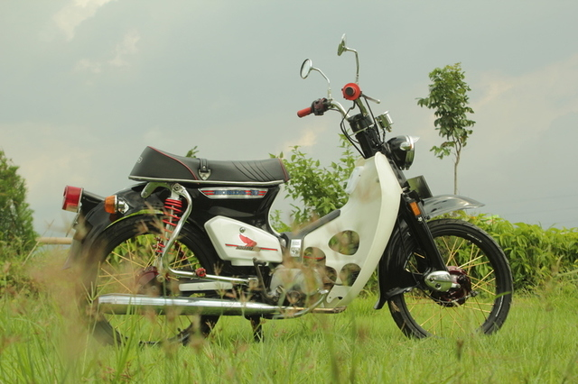 Honda 800 Modifikasi 1