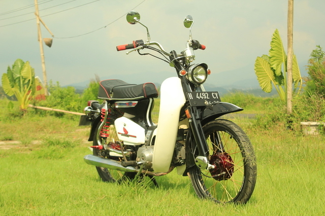 Honda 800 Modifikasi 9